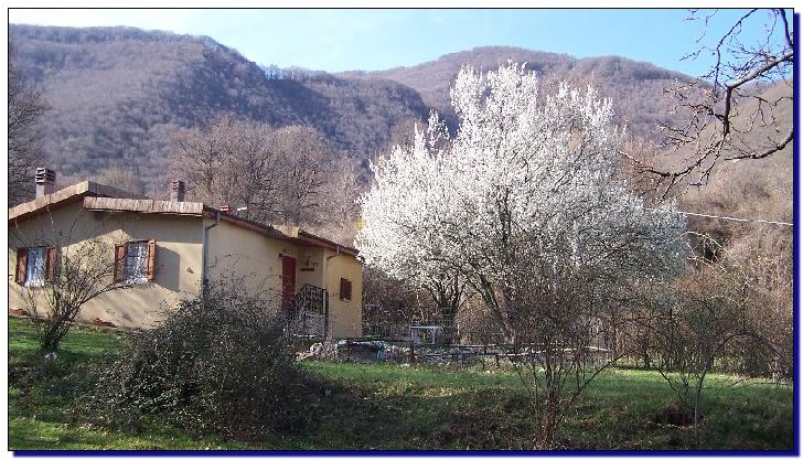 Primavera al bed and breakfast la quercia che ride